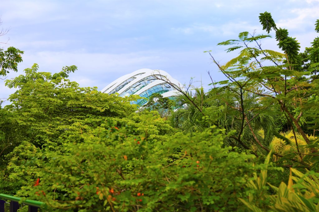 The view to the Cloud Forest Dome from Gardens by the Bay.